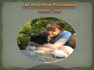 Our PowerPoint Presentation Anastasia + Hugo