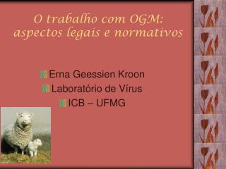 O trabalho com OGM: aspectos legais e normativos