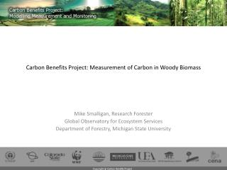 Carbon Benefits Project: Measurement of Carbon in Woody Biomass