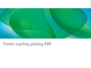 Tender regeling  piloting  EBI