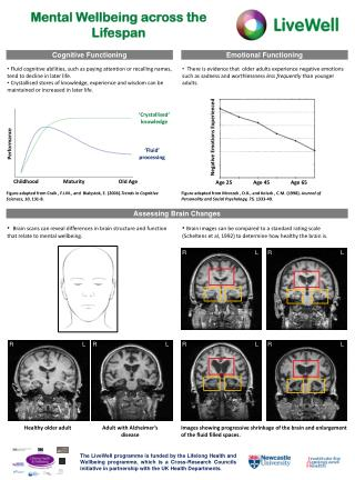 Mental Wellbeing across the Lifespan