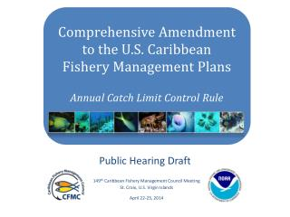 Comprehensive Amendment to the U.S. Caribbean     Fishery Management Plans