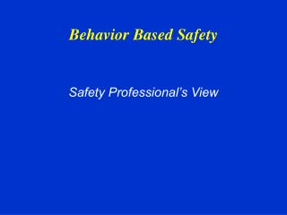 Safety Professional s View