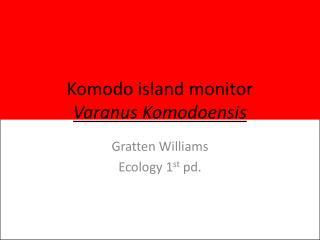 Komodo island monitor Varanus Komodoensis