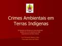 Crimes Ambientais em Terras Ind genas