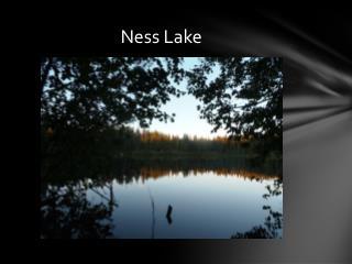 Ness Lake