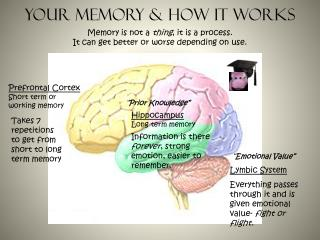 Your memory & How it Works