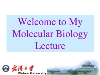 Welcome to My Molecular Biology Lecture