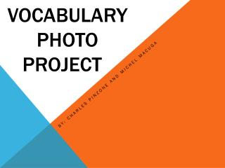 Vocabulary Photo Project