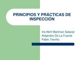 PRINCIPIOS Y PR CTICAS DE INSPECCI N