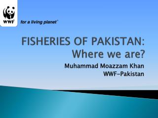 FISHERIES OF PAKISTAN: Where we are?