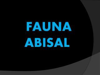 FAUNA      ABISAL