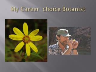 My Career  choice-Botanist