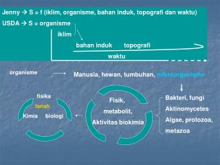 Jenny   S = f ( iklim ,  organisme ,  bahan induk ,  topografi dan waktu ) USDA  S =  organisme