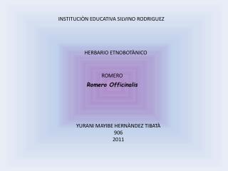 INSTITUCIÒN EDUCATIVA SILVINO RODRIGUEZ