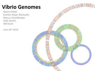 Vibrio  Genomes