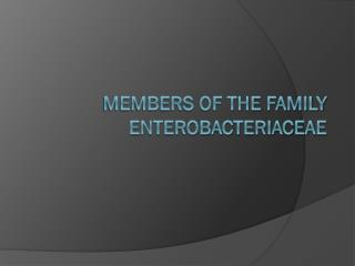 Members of the Family Enterobacteriaceae