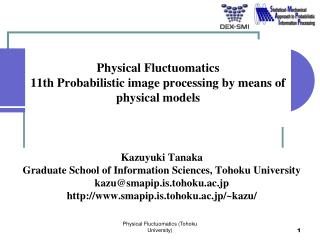 Physical  Fluctuomatics 11th Probabilistic image processing by means of physical models