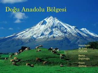 Do?u Anadolu B�lgesi