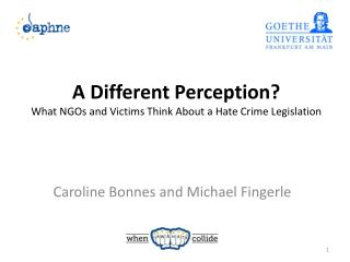A Different Perception? What NGOs and Victims Think About a Hate Crime Legislation