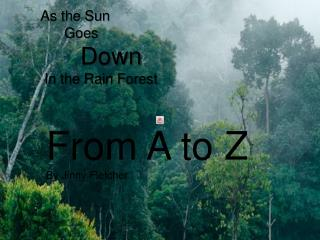 As the Sun       Goes       Down  In the Rain Forest