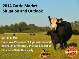 2014 Cattle Market  Situation and Outlook