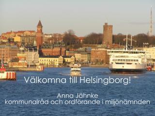 Pernilla Fahlstedt -  Estratega del medio ambiente
