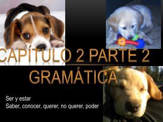 Capítulo 2 Parte 2 Gramática