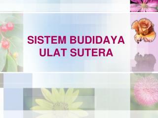 SISTEM BUDIDAYA ULAT SUTERA