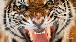 Tiger By: Jeff Stone