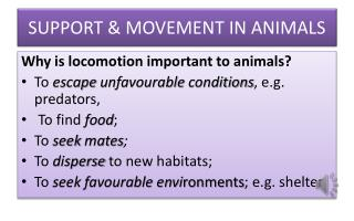 SUPPORT & MOVEMENT IN ANIMALS