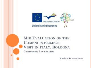 Mid Evaluation of the Comenius project Visit in Italy ,  Bologna