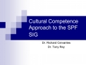 Cultural Competence Approach to the SPF SIG