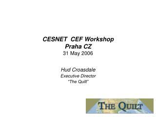 CESNET  CEF Workshop Praha CZ 31 May 2006