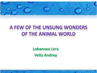 A few of the unsung wonders of the animal world