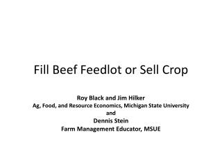 Fill Beef Feedlot or Sell Crop