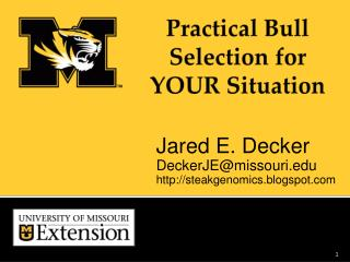 Practical Bull Selection for YOUR  Situation