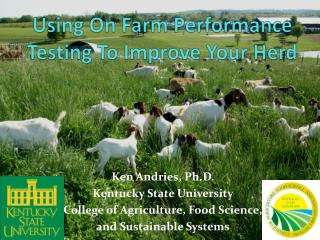 Using On Farm Performance Testing To Improve Your Herd