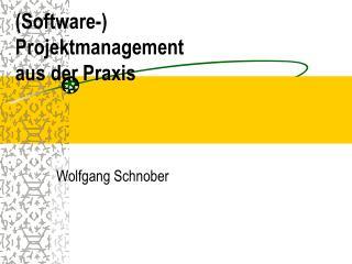 Software- Projektmanagement aus der Praxis