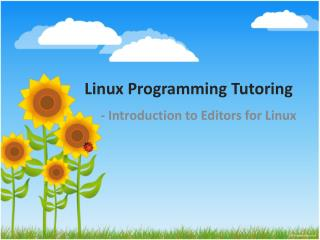 Linux Programming Tutoring