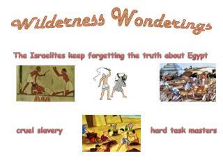 Wilderness Wonderings
