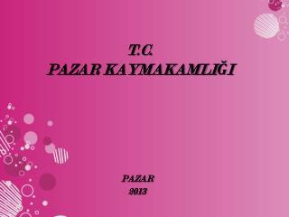 T.C. PAZAR KAYMAKAMLIĞI