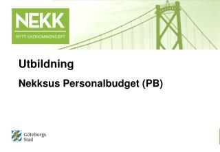 Nekksus Personalbudget (PB)