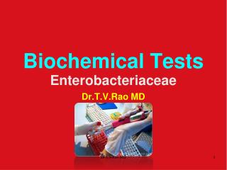 Biochemical Tests Enterobacteriaceae