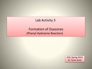 Lab Activity 3    Formation of  Osazones (Phenyl Hydrazine Reaction)