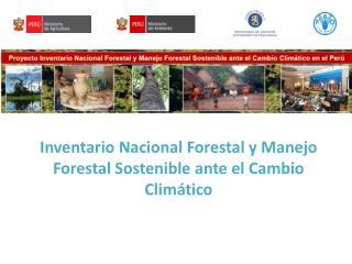 Inventario Nacional Forestal y Manejo Forestal Sostenible ante el Cambio Climático