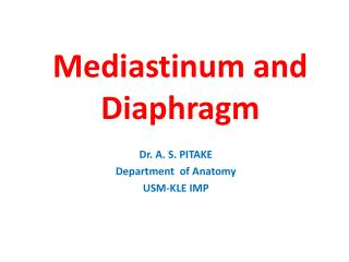 Mediastinum and Diaphragm