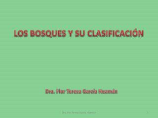LOS BOSQUES Y SU CLASIFICACI�N