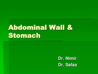 Abdominal Wall & Stomach