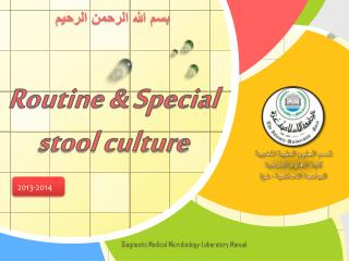 Routine & Special  stool culture